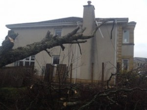 Work underway to remove danger- storm damage