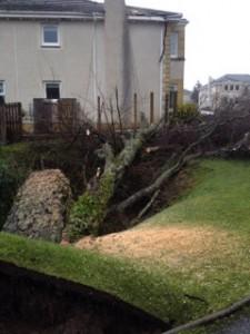 Work underway to remove danger - storm damage